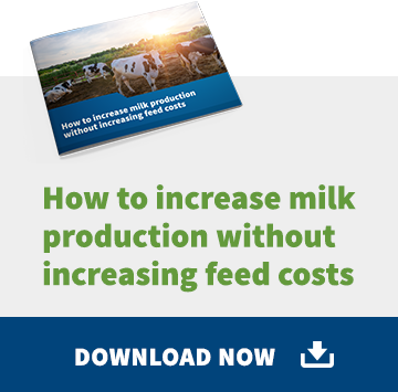how-to-increase-milk-production-without-increasing-feed-costs