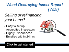 raleigh nc wdi report, wood destroying insect report raleigh