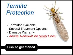 termite control Garner nc, termite exterminator