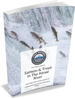 Salmon and Trout in the Kenai River