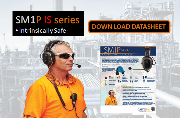 SM1P IS Down Load Datasheet