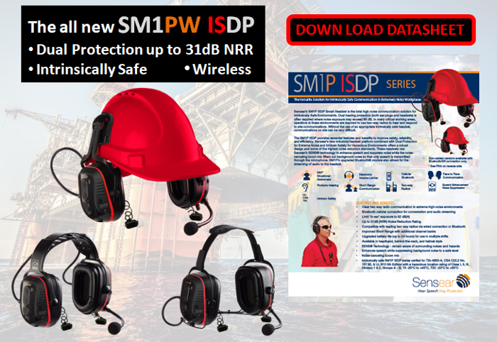 SM1PW ISDP Down Load Datasheet