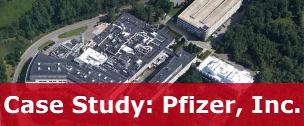 Case Study, Pfizer, Inc.