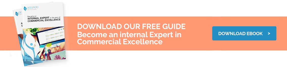 CTA-commecial-excellence-guide
