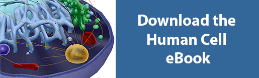 download human cell ebook