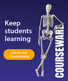 Keep students learning - Check out Visible Body Courseware