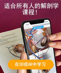 在3D或AR中学习