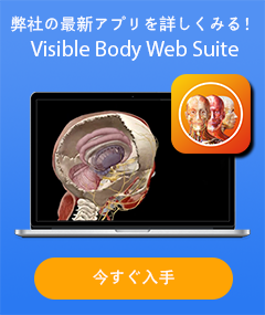 Visible Body Web Suite - 弊社の最新アプリを詳しくみる