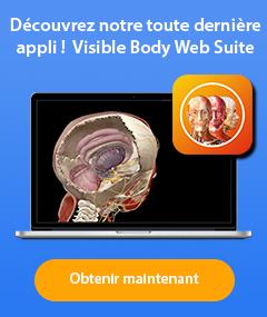 Visible Body Web Suite - Découvrez notre toute dernière appli