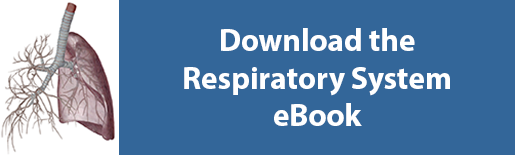 download respiratory system ebook