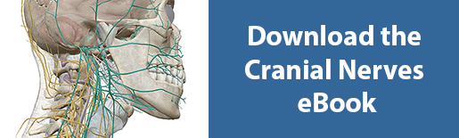 download cranial nerves ebook