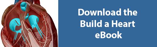 download build a heart ebook