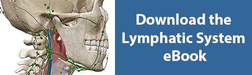 download lymphatic system ebook
