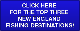 CLICK HERE  FORTHE TOP THREE  NEW ENGLAND  FISHING DESTINATIONS!
