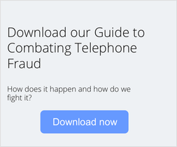 Download the Telephone Fraud PDF