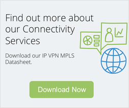 Download IP VPN MPLS Datasheet