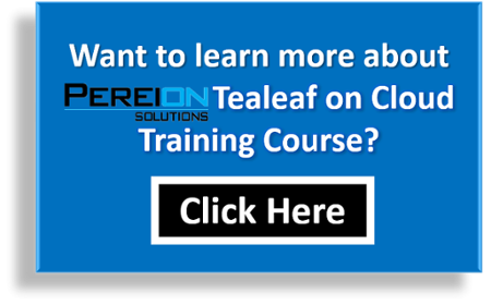 Pereion Solutions Tealeaf on Cloud Training Course