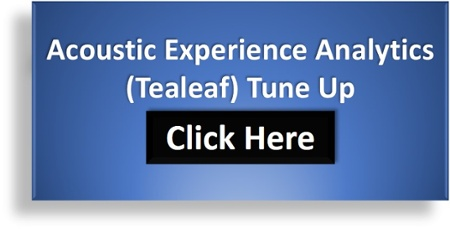 Acoustic Experience Analytics (Tealeaf) Tune Up