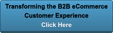 Transforming the B2B eCommerce  Customer Experience Click Here