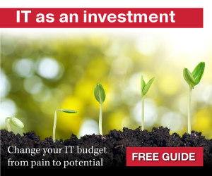IT as an investment - change your IT budget from pain to potential - download free guide