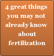 4 great things  you may not  already know  about  fertilization