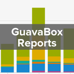 Web Analytics and Reporting - GuavaBox Reports