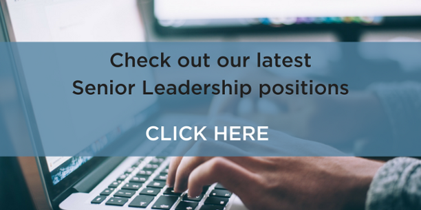 SeniorLeadershipJobs