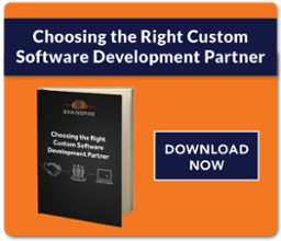 Ebook Choosing the Right Custom Software Development Partner