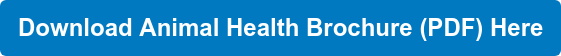 Download Animal Health Brochure (PDF) Here
