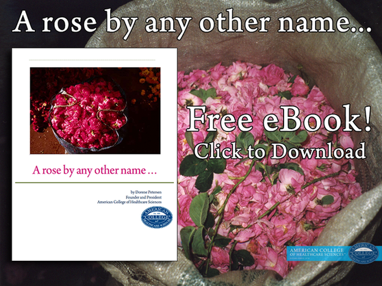 A rose by any other name eBook