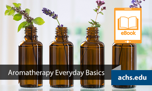 Aromatherapy Everyday Basics Ebook