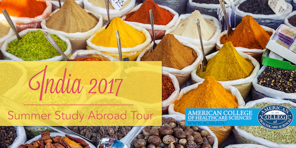 Study Abroad in India 2017