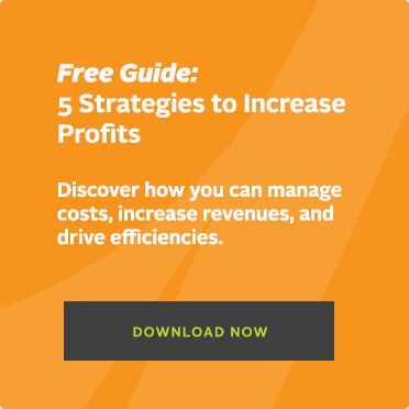 Free Guide: 5 Strategies to Increase Profits