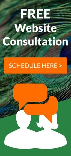 FREE Website Consultation!