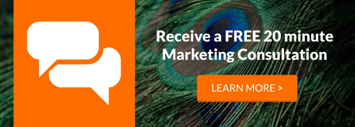 FREE 20 Minute Digital Marketing Consultation!
