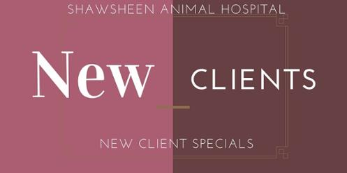 veterinary services new customer sign up deal tewksbury ma animal hospital
