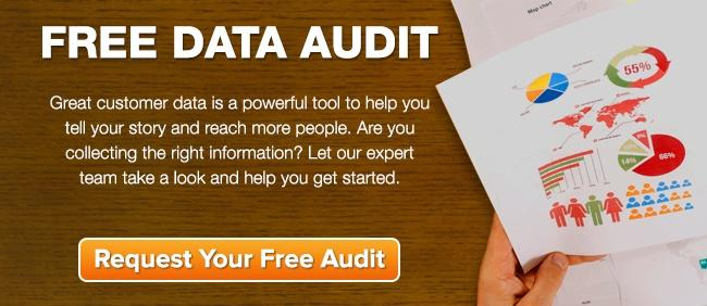 free data audit