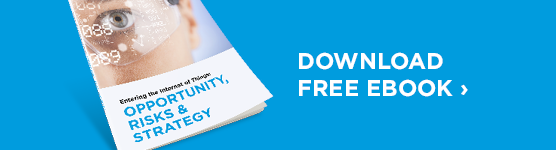 Entering the Internet of Things: Opportunity, Risks & Strategy Download the free eBook now