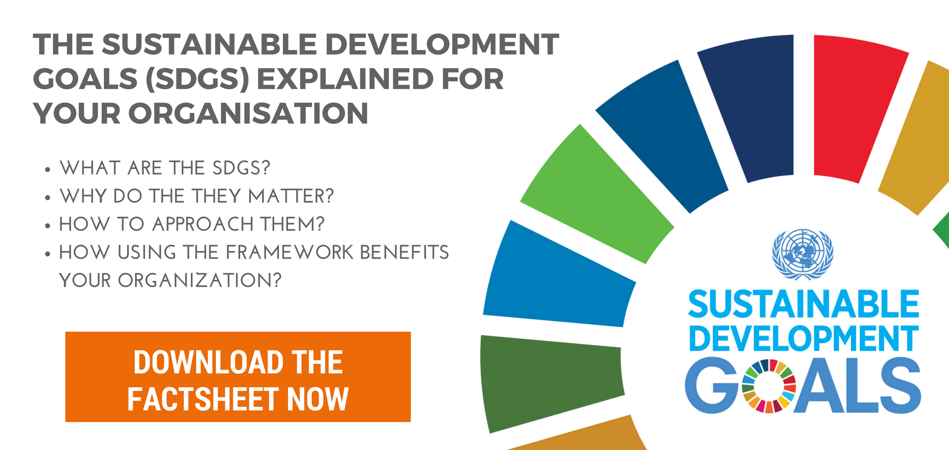 The Sustainable Development Goals explained for your organisation - download now