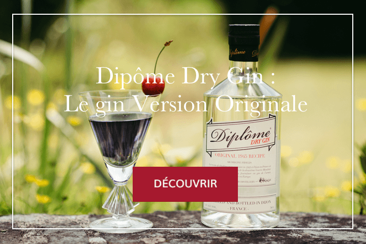 Diplôme Gin : Le gin, Version Originale