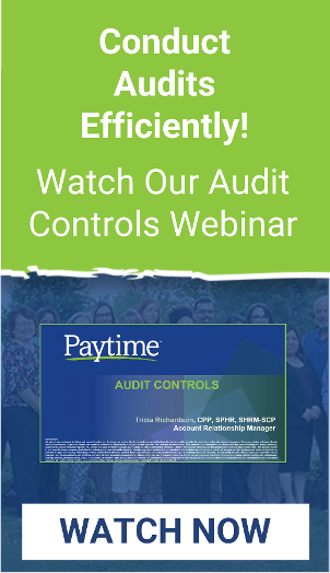 Audit Controls Webinar
