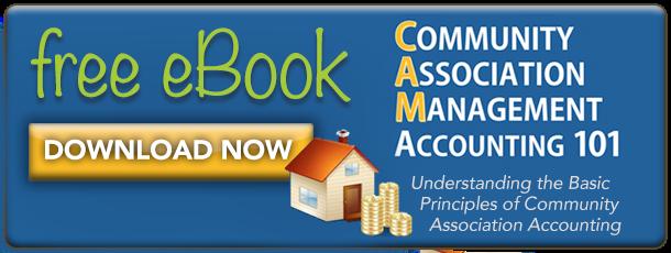 Free eBook: CAM Accounting 101