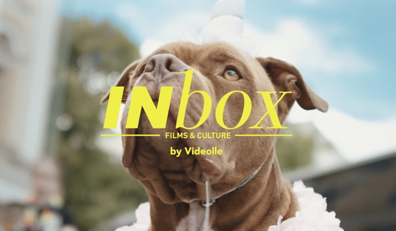 inbox by videolle