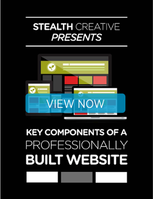 View Key Components of a Professionally Built Website ebook now.