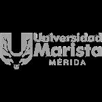 Universidad Marista de Mérida & Clicky