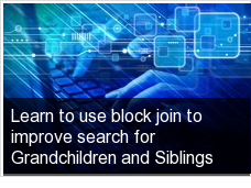 Learn to use block join to improve search for Grandchildren and Siblings