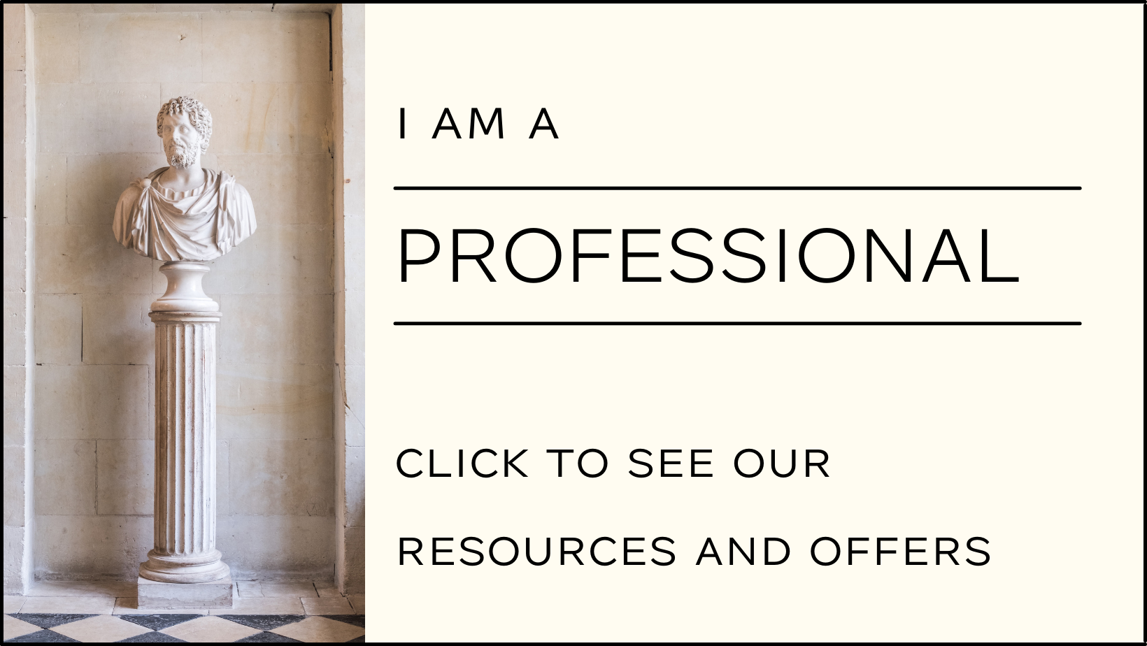 Writing Resources for Professionals