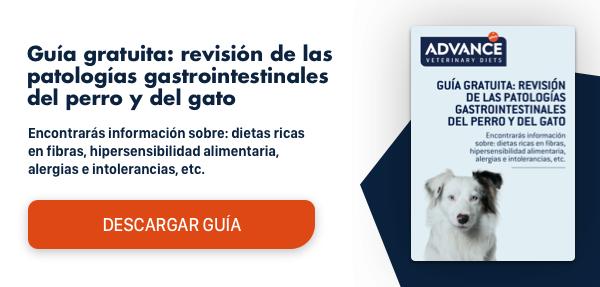Guía Gastrointestinal parte 2
