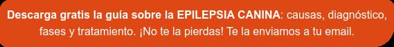 [Descarga gratis]  Guía sobre la EPILEPSIA CANINA: causas, fases, diagnóstico y tratamiento