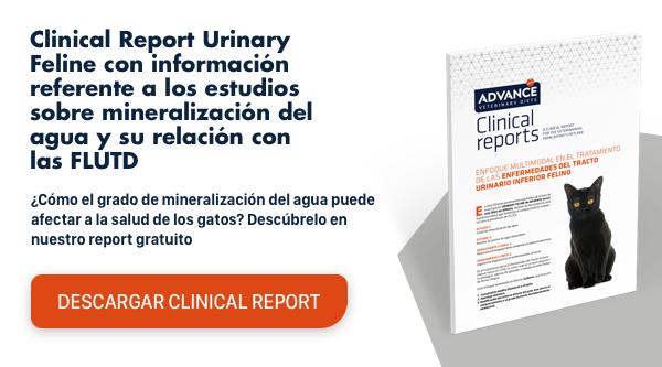 CR Urinary mineralización agua